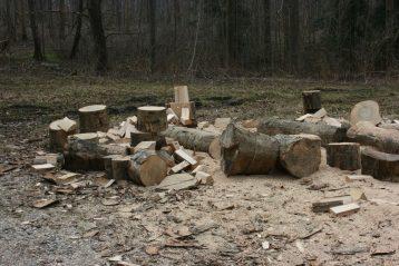 3 tilbud på billig træfældning Sønderborg